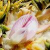 Astragalus echinus